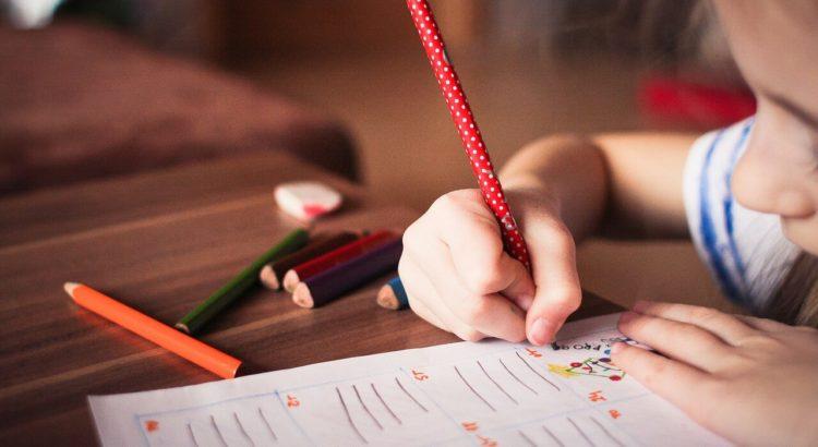 funciones del auxiliar de educación