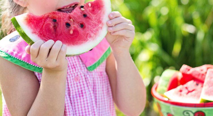 actividades de nutrición para niños de primaria