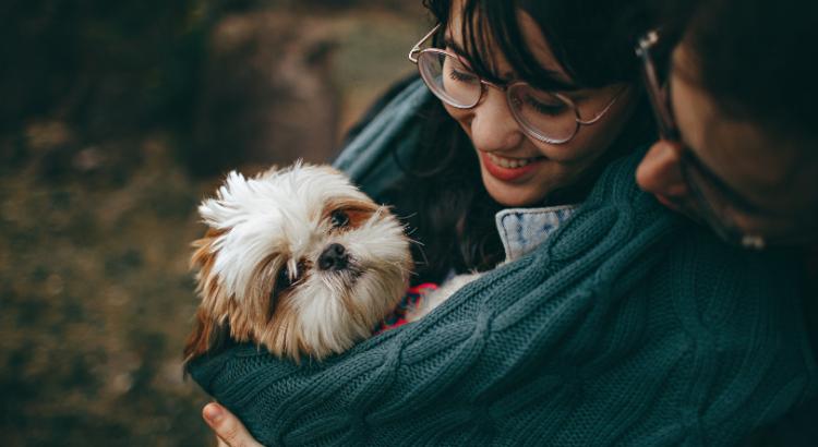5 cuidados bascios para tu animal de compañía